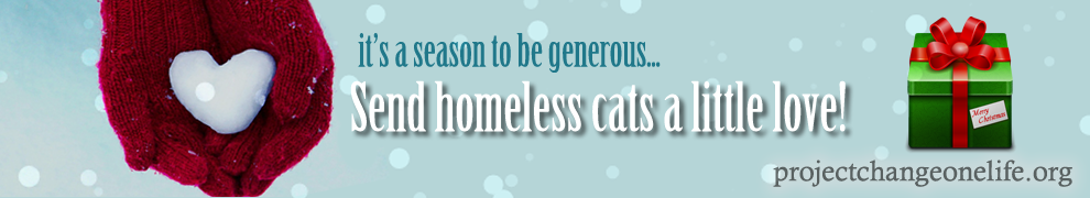 Donate now and help a good cause!